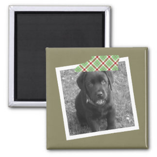 Make Your Own One Of A Kind Personalized Photo Magnet