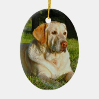 Make Your Own Pet Christmas Ornament