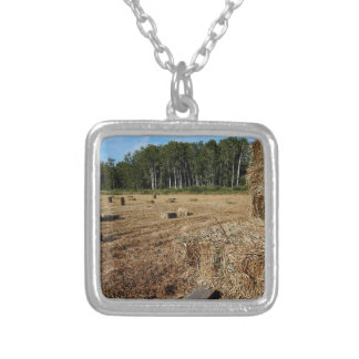 Making Hay While the Sun Shines Silver Plated Necklace