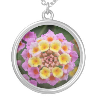 Makro: Pink and Yellow Lantana Flower Silver Plated Necklace