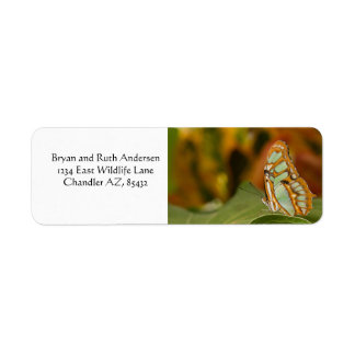 Malachite on the edge of a leaf return address label