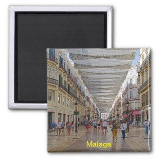 Malaga Magnet