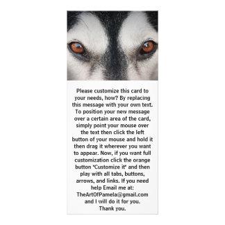 Malamute Dog Brown Eyes Rack Card