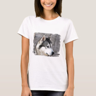 Malamute Photo Ladies Fitted T-Shirt