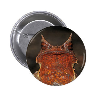 Malayan Horned Frog Button