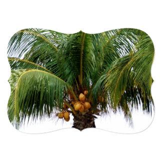 """Maldives Coconut Palm 5"""" X 7"""" Invitation Card"""