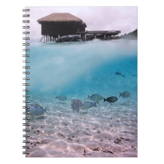 Maldives Diving Adventures Beach Coral Fish Notebook