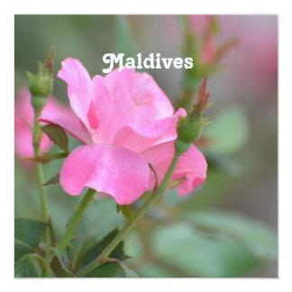"""Maldives Rose 5.25"""" Square Invitation Card"""