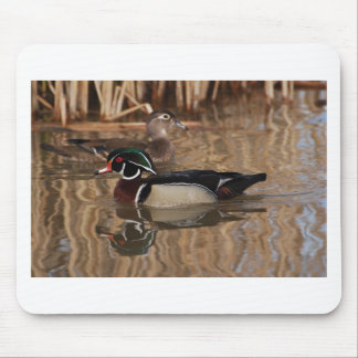 Male and female ducks. mouse pad