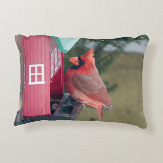 Male Cardinal Accent Pillow