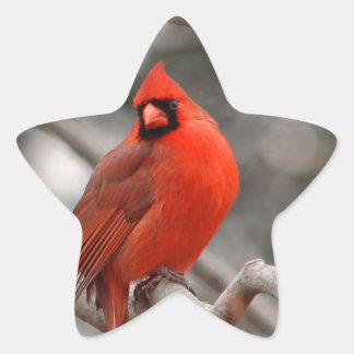 Male Cardinal stickers
