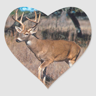 Male Deer Buck With Antlers Heart Stickers