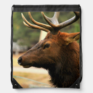 Male Elk Drawstring Bag