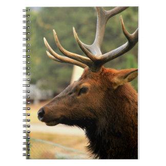 Male Elk Spiral Notebook