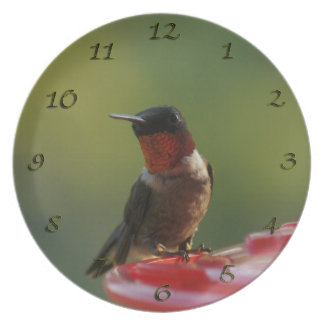 Male Hummingbird Plate Clock
