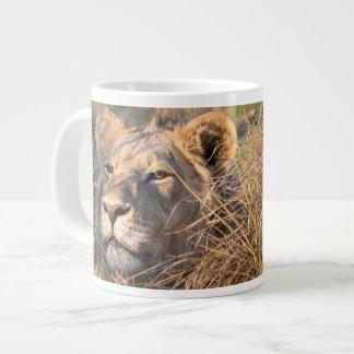 Male lion stalking in grass, head peeking out jumbo mug