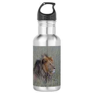 MALE LION WATER BOTTLE 532 ML WATER BOTTLE