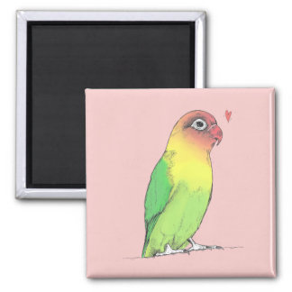 Male Lovebird Magnet | Cute Original Illustration