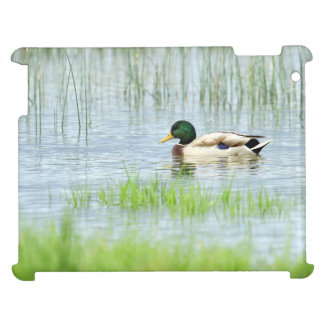 Male mallard duck floating on the water case for the iPad 2 3 4