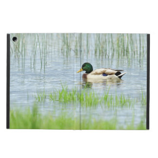 Male mallard duck floating on the water iPad air cover