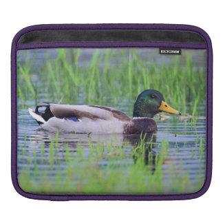 Male mallard duck floating on the water iPad sleeve