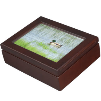 Male mallard duck floating on the water keepsake box