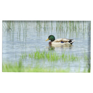 Male mallard duck floating on the water table card holder