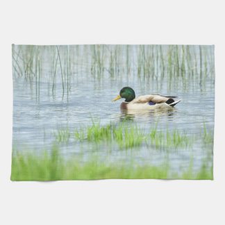 Male mallard duck floating on the water tea towel