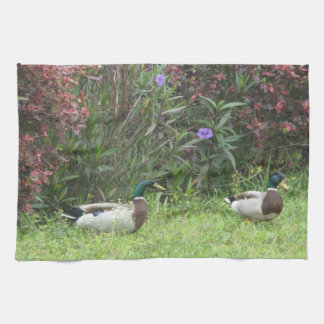 Male Mallard Ducks Kitchen Towels