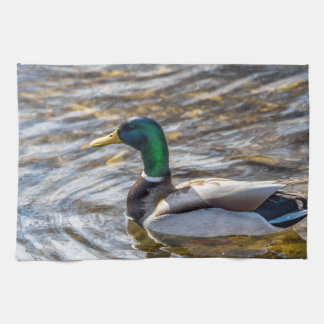 Male Mallard Kitchen Towel