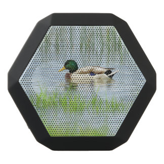 Male mallard or wild duck, anas platyrhynchos black bluetooth speaker