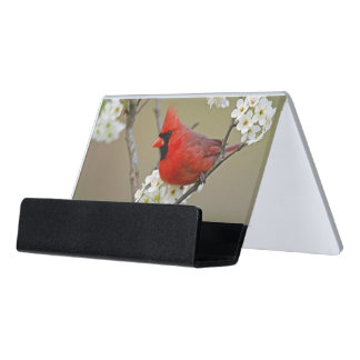 Male Northern Cardinal among pear tree Desk Business Card Holder