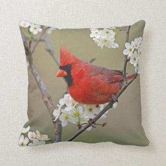 Male Northern Cardinal among pear tree Throw Cushion