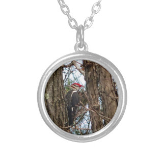 Male Pileated Woodpecker Silver Plated Necklace