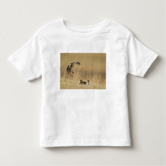 Male prairie chickens at lek in Loup County Shirts