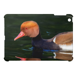 Male red-crested pochard, netta rufina, duck case for the iPad mini