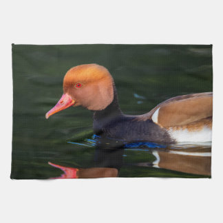Male red-crested pochard, netta rufina, duck tea towel