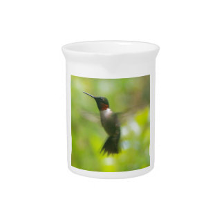 Male Ruby Throat Hummingbird Pitcher