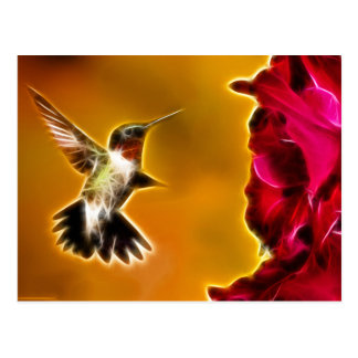 Male Ruby-throated Hummingbird Postcard