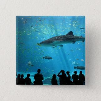Male Whale Shark 15 Cm Square Badge
