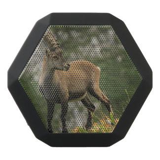 Male wild alpine, capra ibex, or steinbock black bluetooth speaker