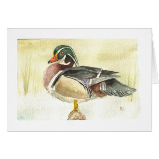 Male Wood Duck Card
