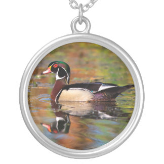 Male wood duck swims, California Silver Plated Necklace