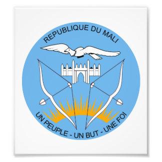 Mali Coat Of Arms Photo
