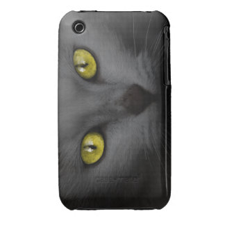 Malicious Kitten Case-Mate iPhone 3 Case