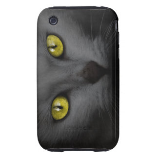 Malicious Kitten iPhone 3 Tough Covers