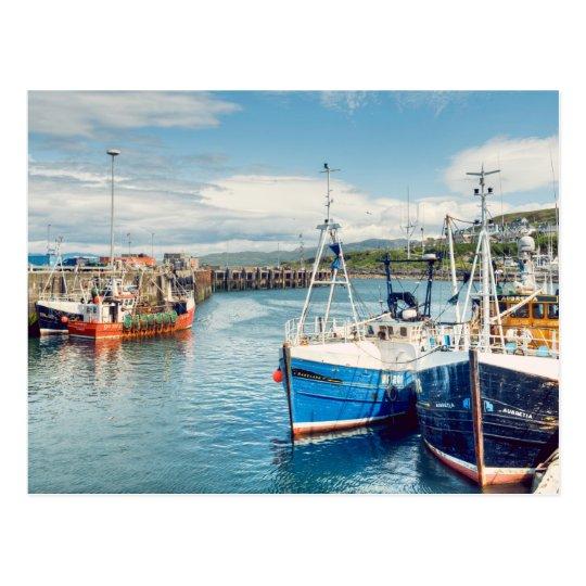Mallaig Harbour Postcard