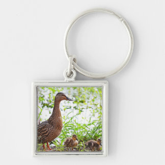 Mallard and Ducklings by Shirley Taylor Silver-Colored Square Key Ring