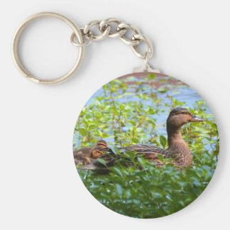 Mallard and Ducklings-Swimming by Shirley Taylor Basic Round Button Key Ring