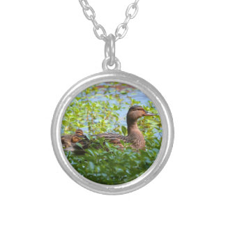 Mallard and Ducklings-Swimming by Shirley Taylor Silver Plated Necklace